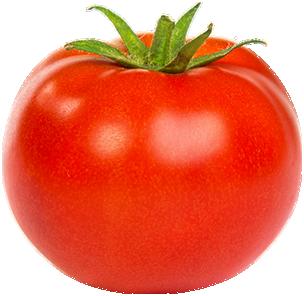 Tomato_new-1